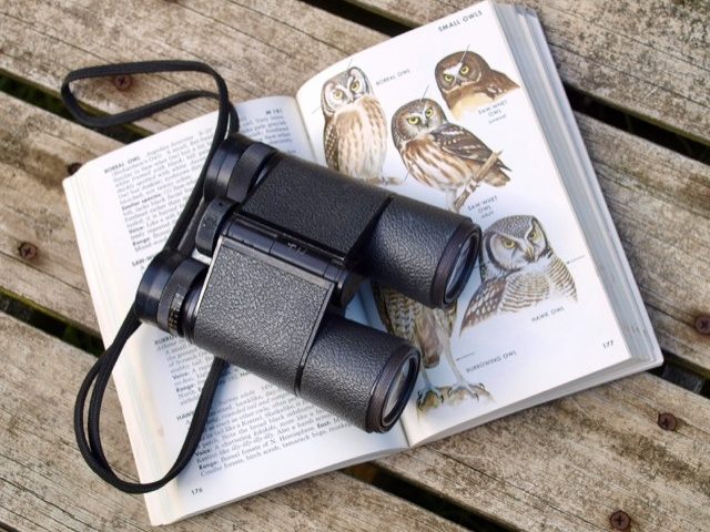 Binoculars and bird book at 9 Hornbills Adult only Glamping Koh Yao